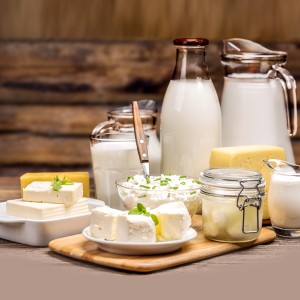 Importance of Dairy Products in Our Daily Life
