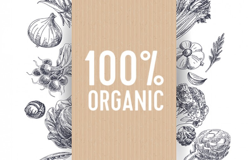 Shop from Quoodo Organic Store and Enjoy the Benefits of Healthy Food