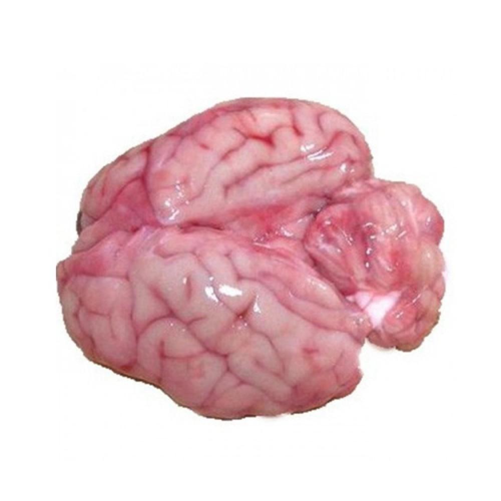 Brain (Mutton)